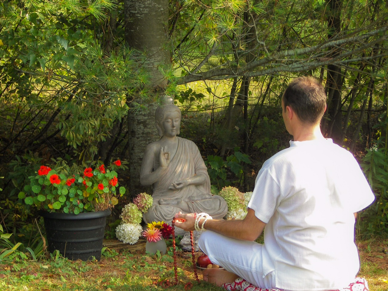 Meditation in the garden