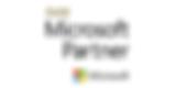 gold-microsoft-partner-logo-colour-300x1