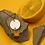 Thumbnail: Larme de bois