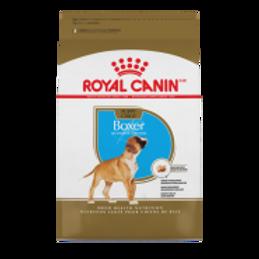 RC BHN Boxer Puppy 30 lb