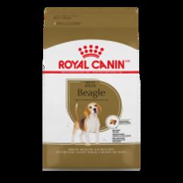 RC BHN Beagle 6 lb