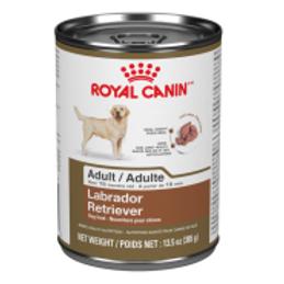 RC BHN Labrador Retriever 12/385 gm