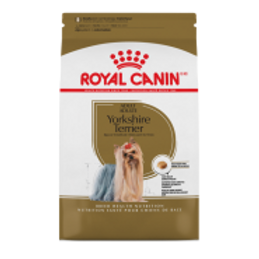 RC BHN Yorkshire Terrier 2.5 lb