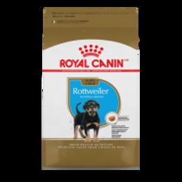 RC BHN Rottweiler Puppy 30 lb