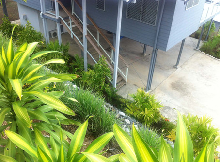 Residential Compound - New Landscaping