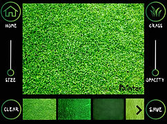 Painter Sample_Grass_IPAD_smaller.jpg