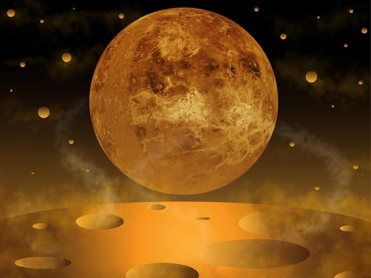 Venus Background_detail.jpg