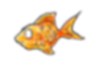 final goldfish with texture.png