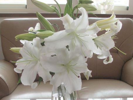 我的第一個花藝作品