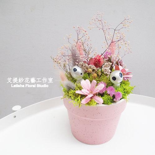 小乾燥花盆-外星人賞花