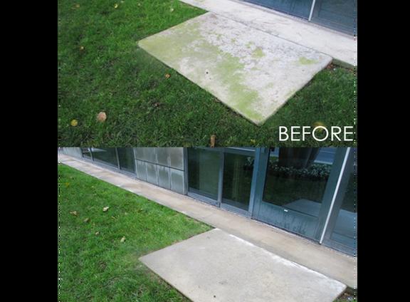 Algae Before & Afteredited.png