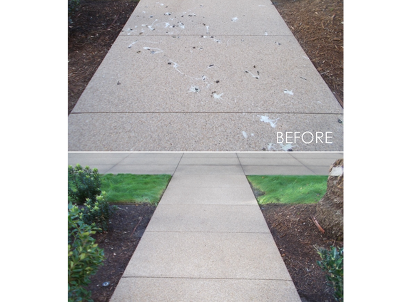 SIDEWALK BIRD DROPPINGS BEFORE & AFTER.png