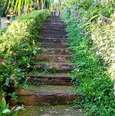 escada 2.jpeg