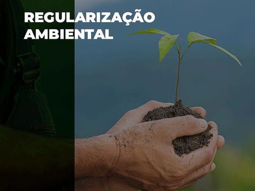Monitoramento ambiental com a Pronto Ambiente.
