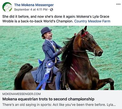 Mokena Messenger