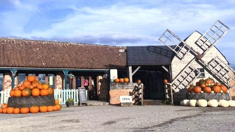 front of farm shop pumpkins_edited_edited_edited.jpg