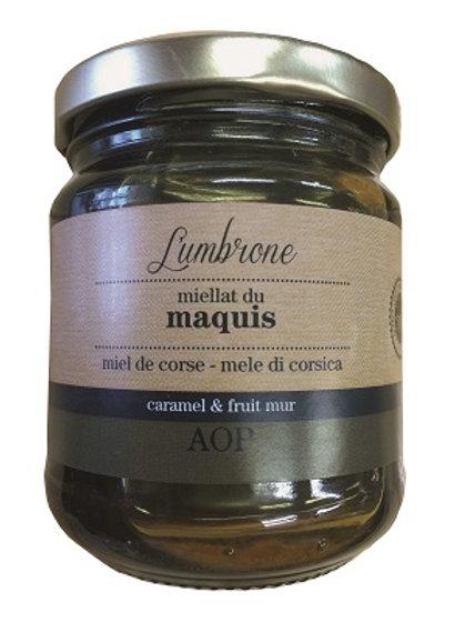 Miel de miellat du maquis 250gr AOP (Calvi)