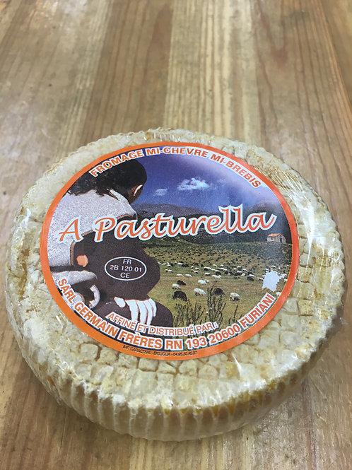 A Pasturella mi-chèvre mi-brebis