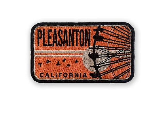 Pleasanton Patch