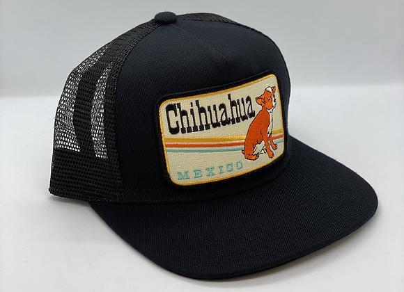Chihuahua Pocket Hat