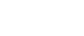 DSC LOGO WHITE [Converted].png