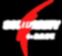 e-Race logo 1.png