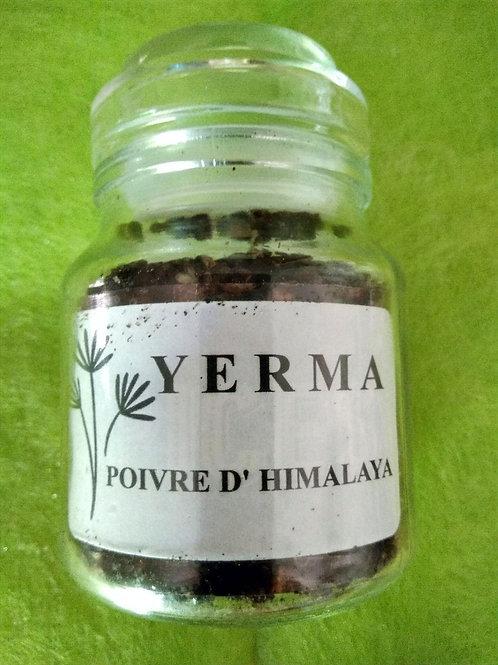 Poivre YERMA 50 g en grains dans un bocal verre.