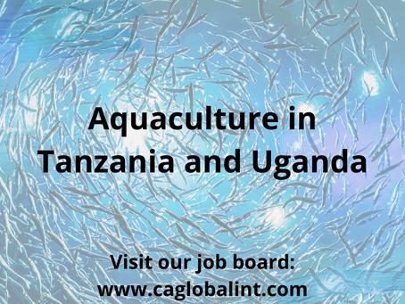 Aquaculture – Tanzania & Uganda's fishing production increases