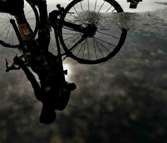 delivery cyclist job