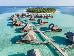 Maldives.webp