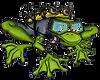 frog%20transparent_edited.png