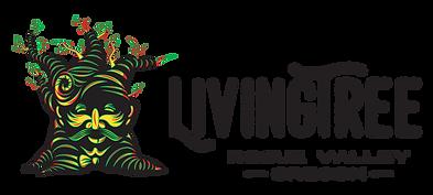 LT_Horizontal_Color_Logo.png