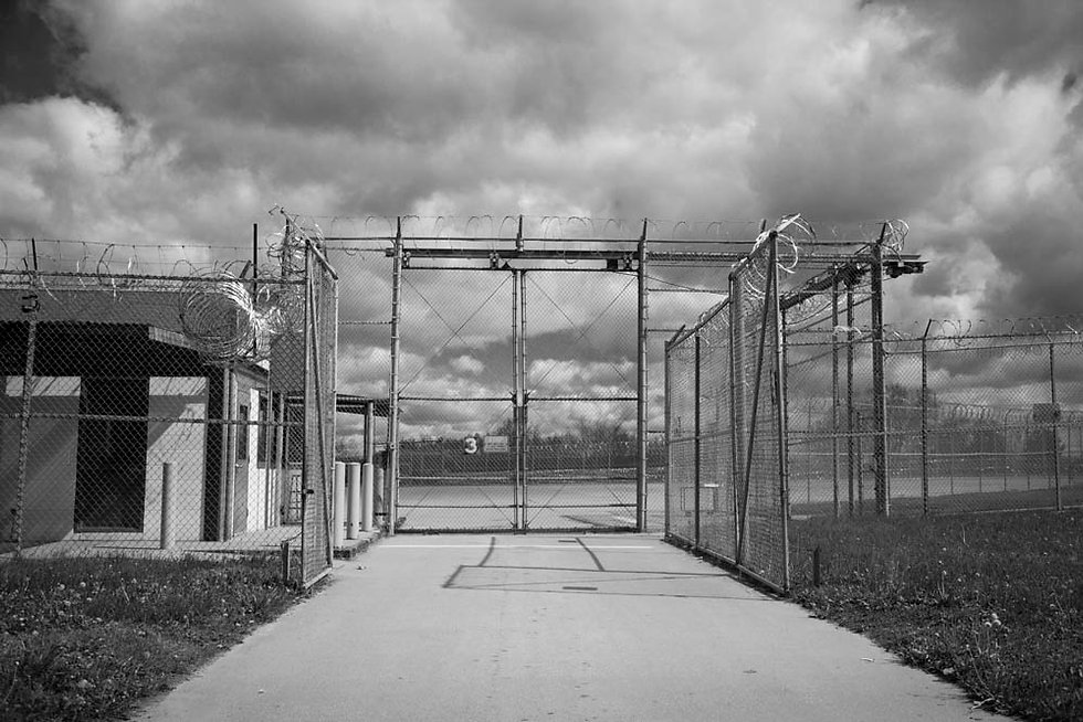Lansing Fence April 2015, 6408.jpg