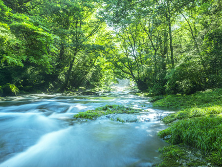 Bill to Amend the Clean Streams Act Enters State House