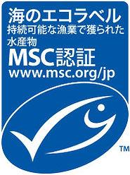 msc_logo-6+.jpg
