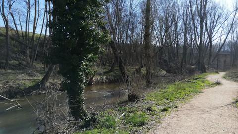 El Paseo Fluvial de Arévalo resalta el valor natural, patrimonial, cultural e histórico de la villa