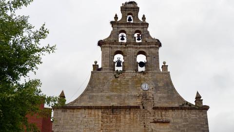 El Pajarón de Campos, histórico vigilante del rico patrimonio de Amusco