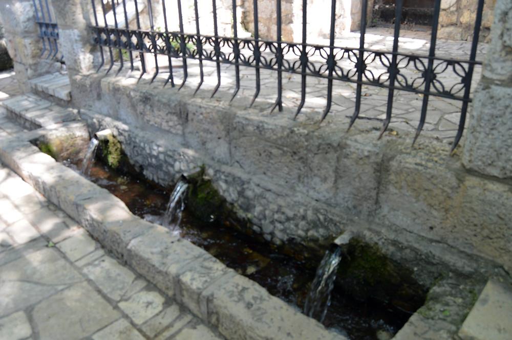 Aguas de la fuente de Recesvinto.