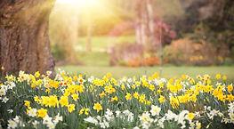 gardening-pod2-470x260.jpg