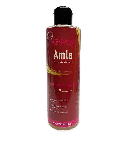 Ayurvedische shampoo Amla