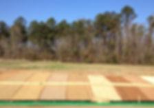 2013-01-23 11.05.06_edited.jpg
