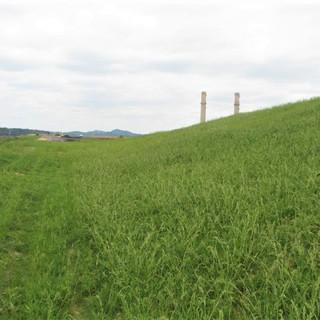 Flexterra - Power Plant Grow In