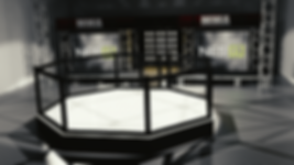 MMA_Stage_Test5.png