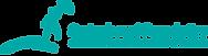 sponsor logo springboard.png