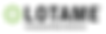 Lotame_Logo_Tagline_Large.png