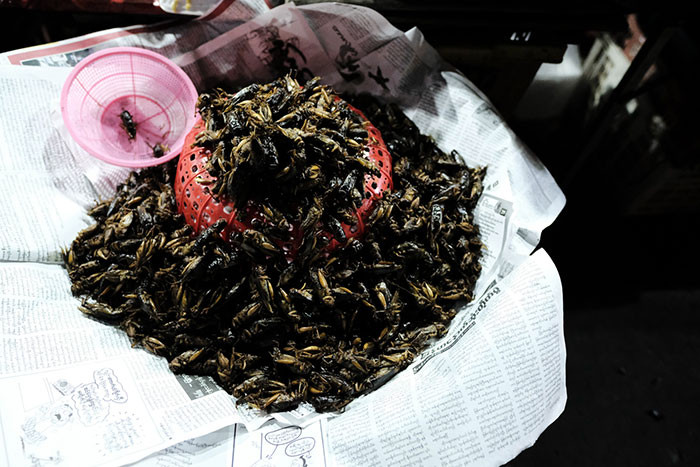 Deep Fried Crickets
