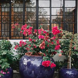 Winner Inn Entry Flowers