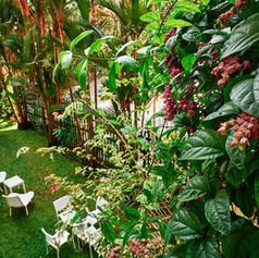Winner Inn Garden View From 2nd Floor