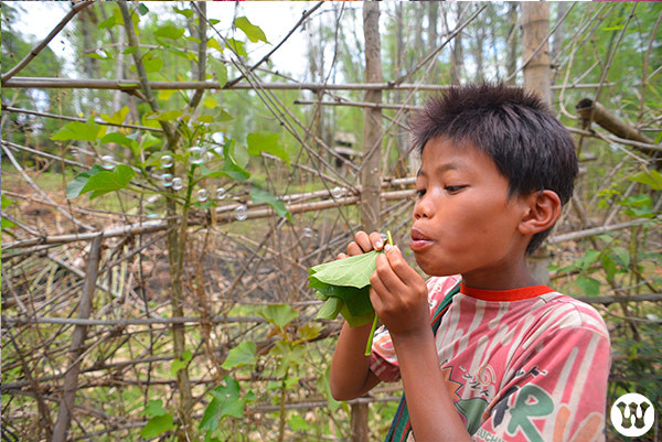 Maung Ye - Mr Ye in Burmese