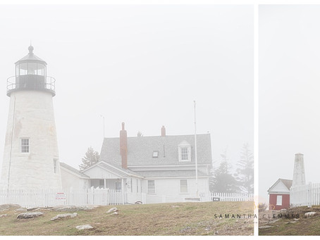 Pemaquid Point Lighthouse Engagement Session | Sarah & Rob